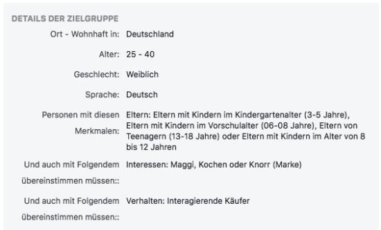 Abbildung: Beispielzielgruppe für die Zielgruppendefinition nach den im Fließtext genannten Kriterien Demografie, Interessen und Verhalten