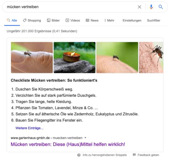 Abbildung: So kann ein Anleitungs-Snippet auf Google aussehen